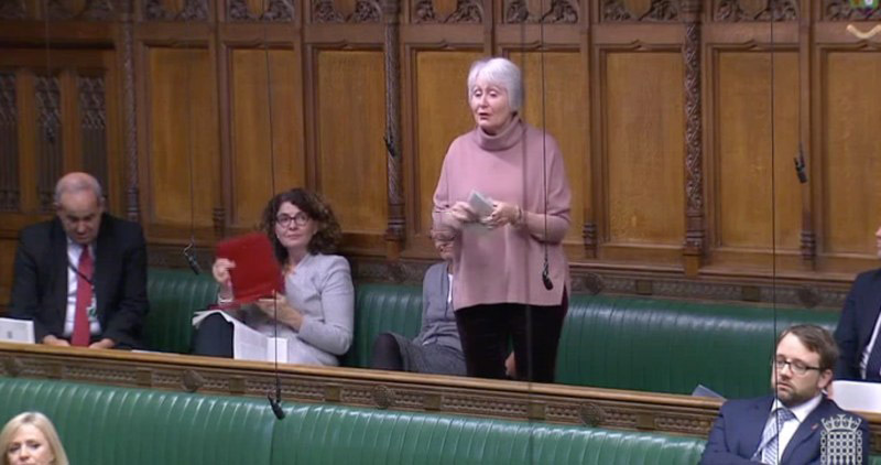 Madeleine Moon MP presents the case for a discussion of Automated Gate Safety in Parliament
