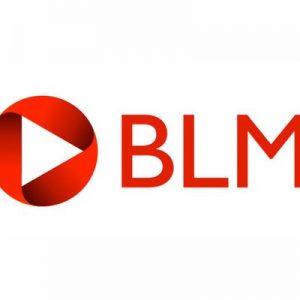 Logo of Gate Safe legal partners BLM